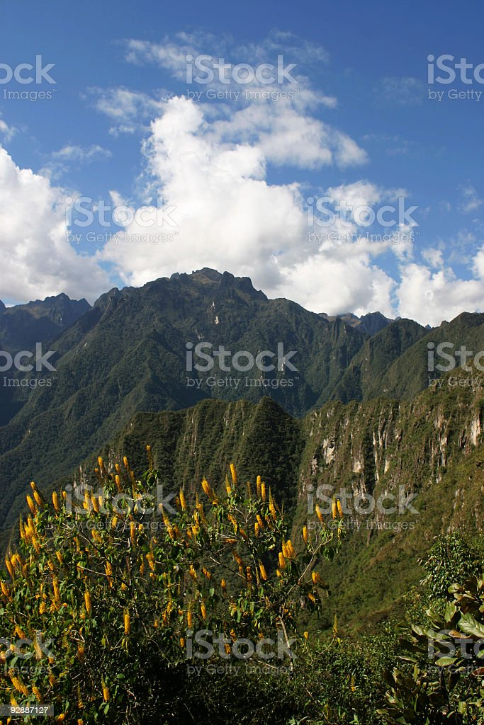 Beautiful sunny day in Machu Picchu (Peru) royalty-free stock photo