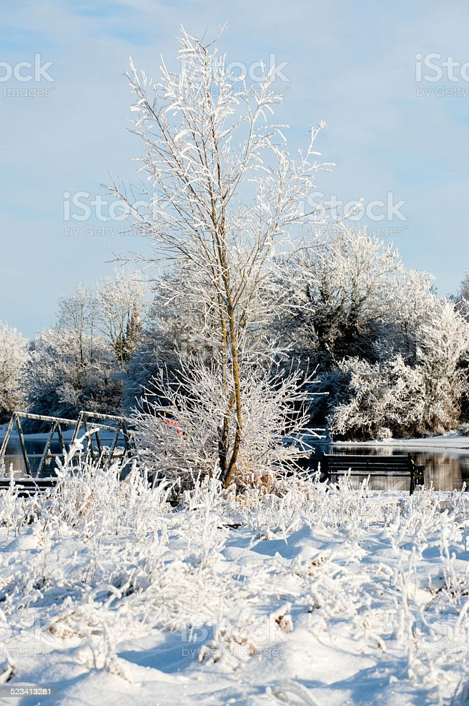 Beautiful sunny day in the winter on the river stock photo