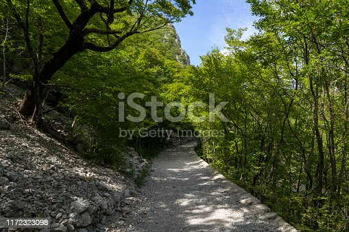 Beautiful sunny summer day in Paklenica National Park Croatia, Wonderful nature and landscape in Velebit Mountains. Calm, peaceful and happy outdoors picture.