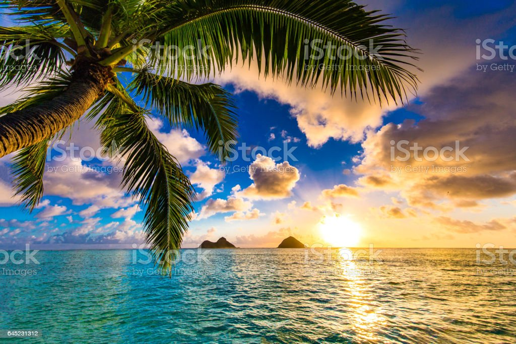Beautiful sunrise at Lanikai Beach in Kailua, Hawaii stock photo