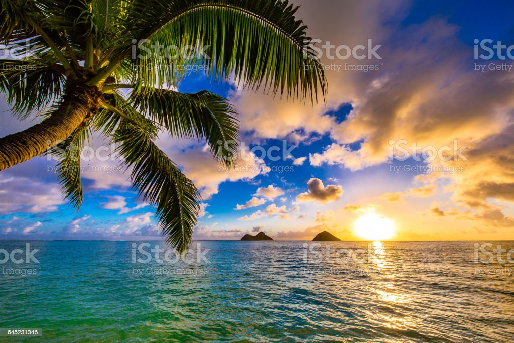 beautiful sunrise at lanikai beach in kailua hawaii stock