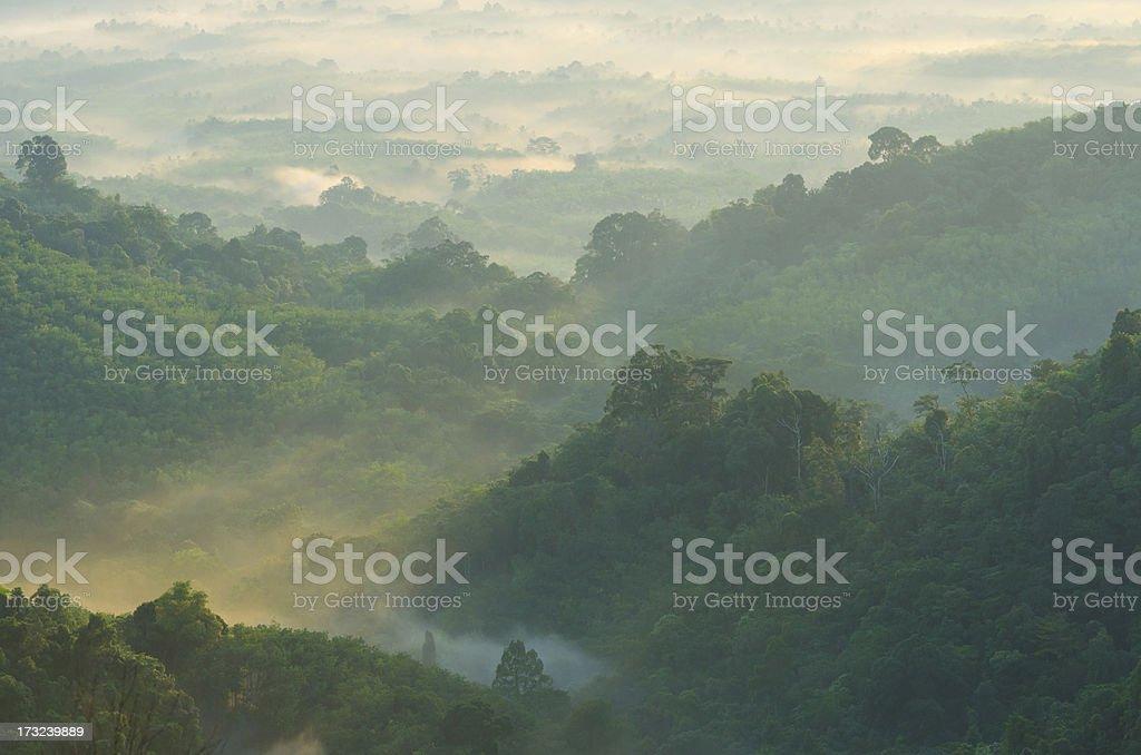 Beautiful sunrise at misty morning mountains . stock photo