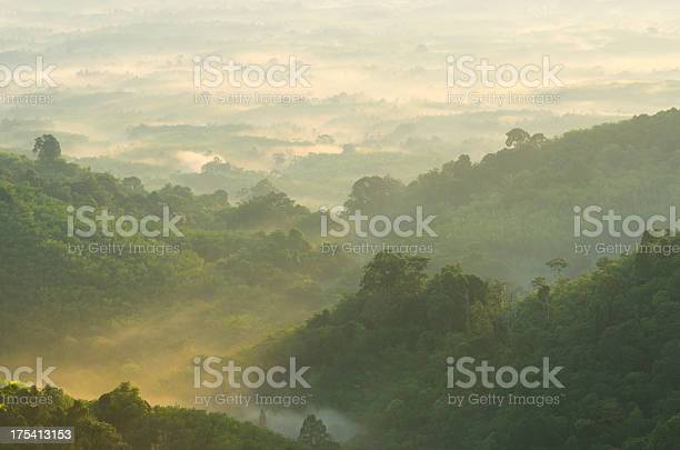 Photo of Beautiful sunrise at misty morning mountains .