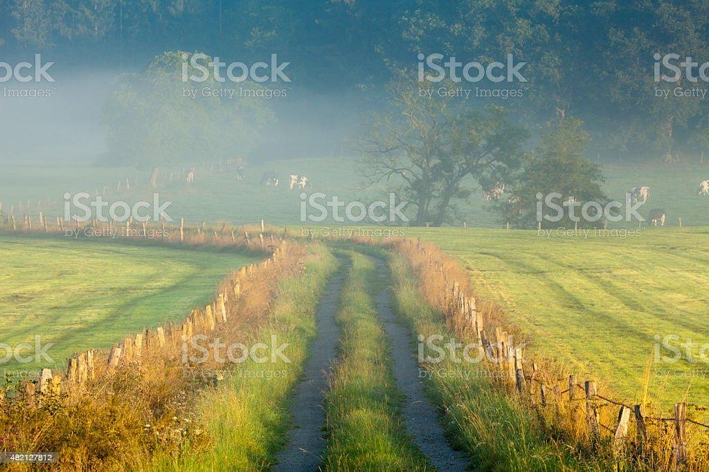 Beautiful sunrise, fog, mist, rural Sauerland, Germany, idyllic countryside landscape stock photo