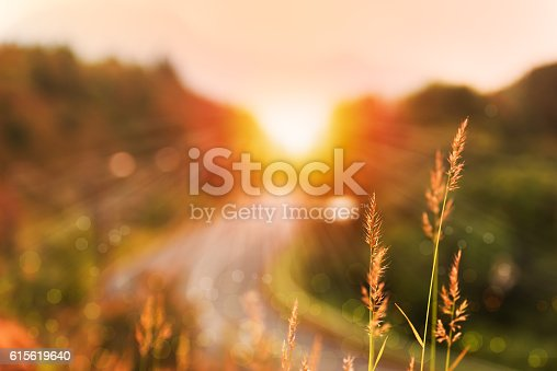 istock Beautiful sunrise landscape in high mountain road 615619640
