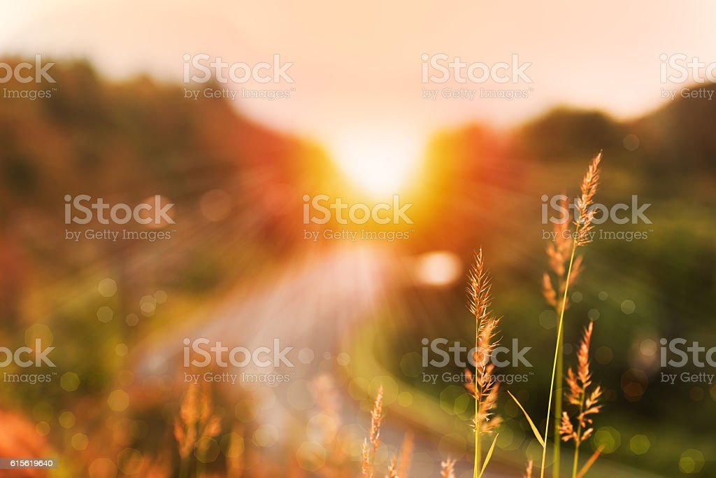 Beautiful sunrise landscape in high mountain road stock photo