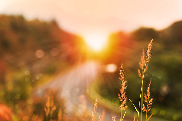 Beautiful sunrise landscape in high mountain road Sun ray landscape  in high mountain road and bokeh sunrise stock pictures, royalty-free photos & images