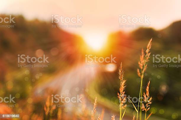 Photo of Beautiful sunrise landscape in high mountain road