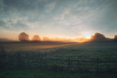 istock Beautiful sunrise over misty field an early summer morning 512153088