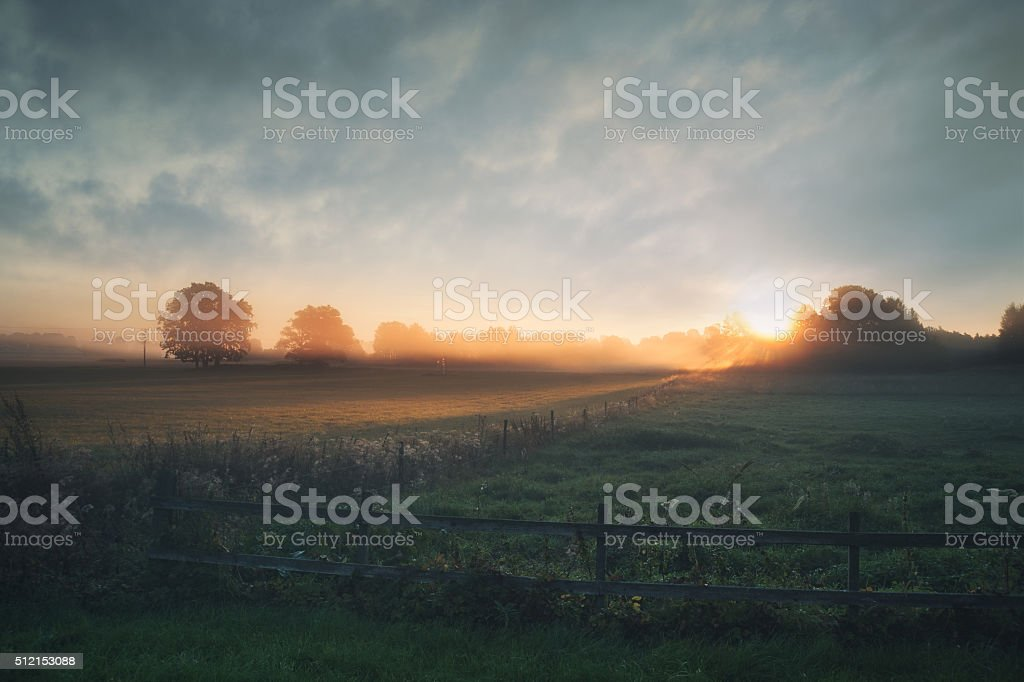 Beautiful sunrise over misty field an early summer morning stock photo