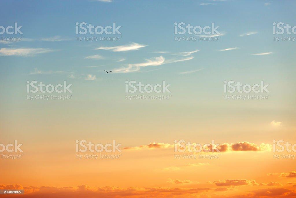 Beautiful sunrise over the horizon stock photo