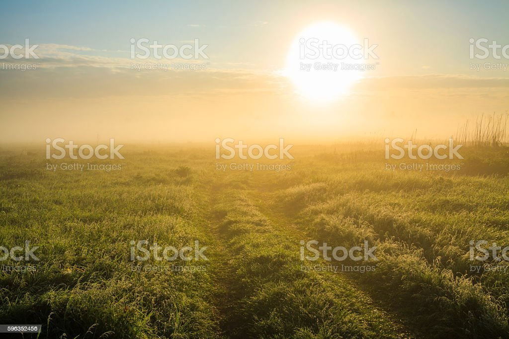 Beautiful sunrise over the misty field. royalty-free stock photo