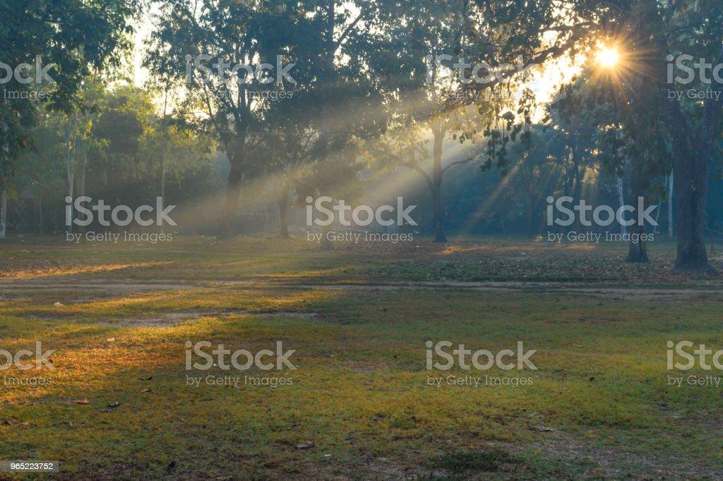 Beautiful sunrise royalty-free stock photo
