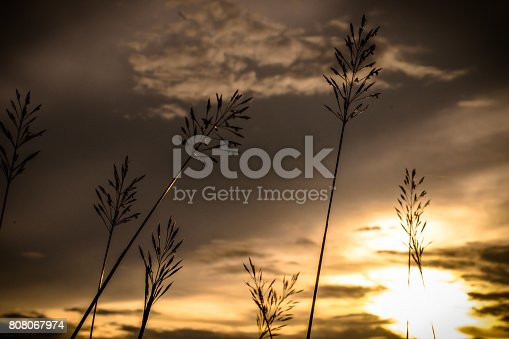 beautiful sunrise sunset sky for background .