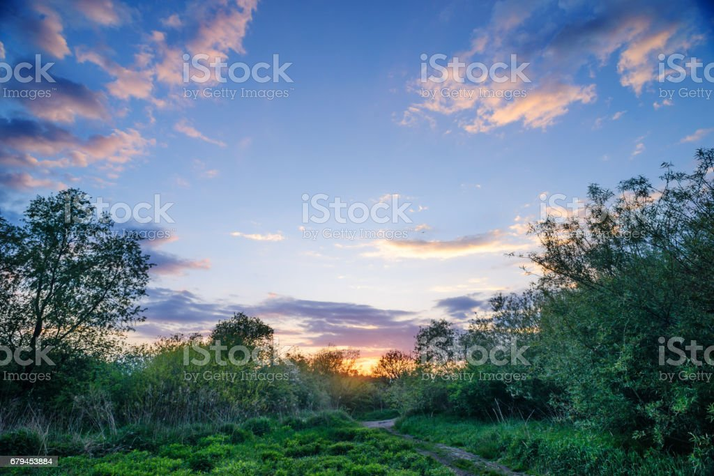 Beautiful sunset above rural lane. Square composition royalty-free stock photo