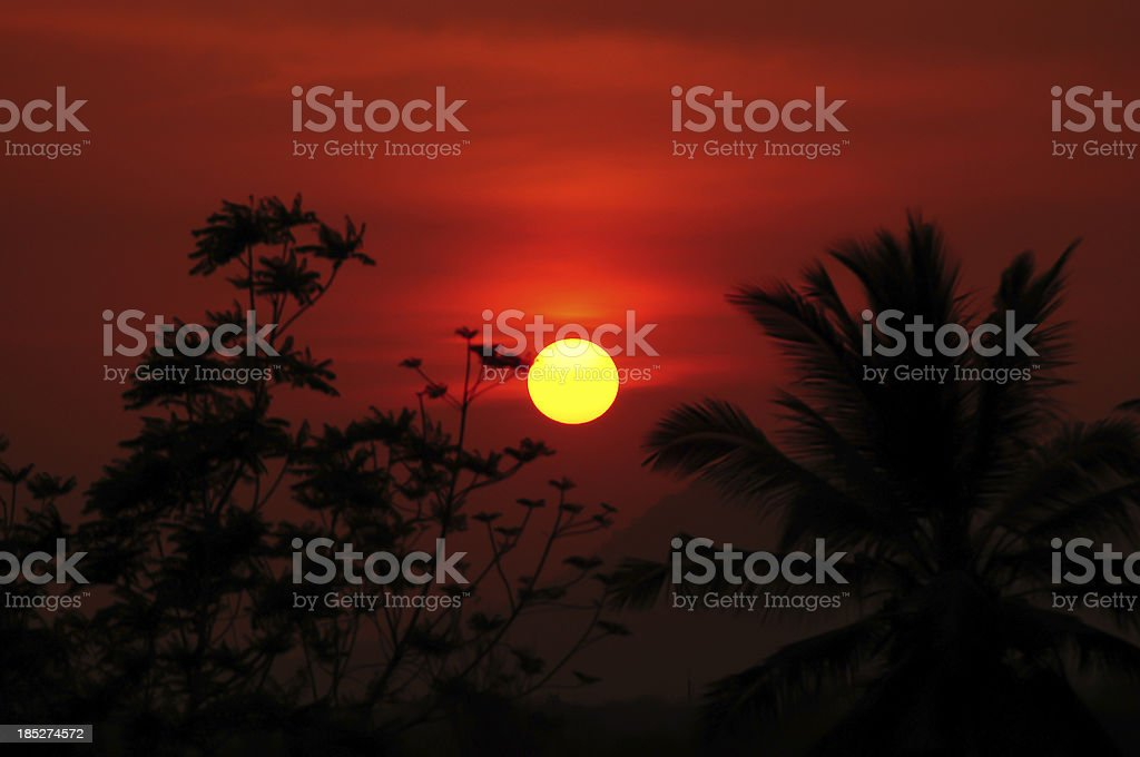 Beautiful sunset above tropical forest royalty-free stock photo