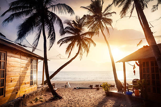 Beautiful Sunset at tropical beach Wooden cottage with sea view in tropical resort with curved coconut palm trees and sunbed on the beach at beautiful sunset goa stock pictures, royalty-free photos & images