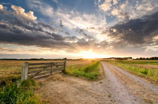 prachtige zonsondergang in Nederlandse zomer landbouwgrond foto