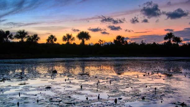 Ein wunderschöner Sonnenuntergang in Französisch-Guayana, Südamerika. – Foto