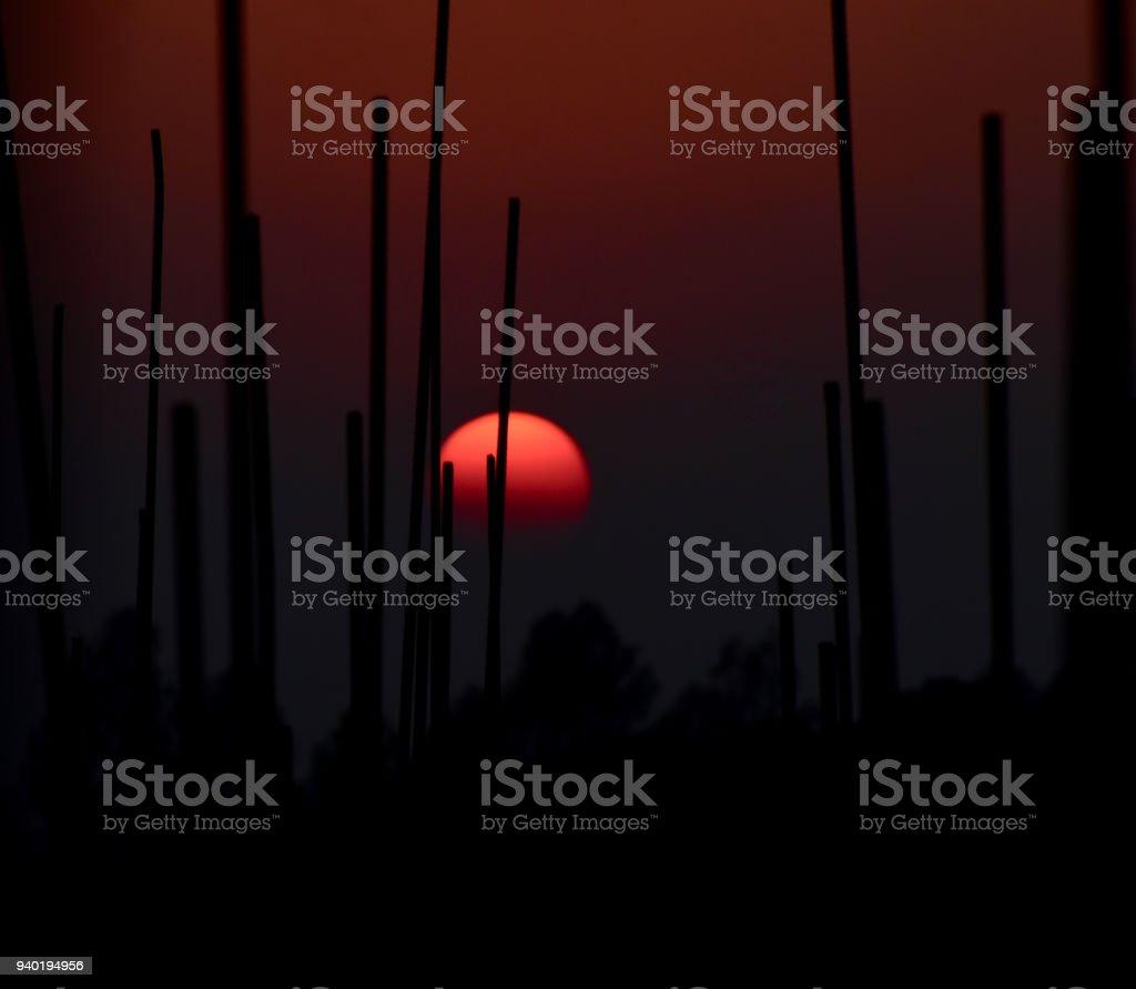 Beautiful sunset isolated stock photo stock photo