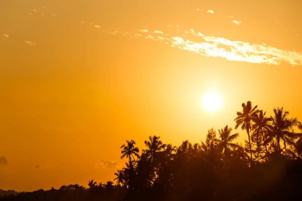 Beautiful sunset landscape tropical beach in Sri Lanka. stock photo