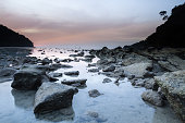 Before dawn on the sea coast, seagulls on the shore