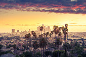 istock Beautiful sunset of Los Angeles downtown skyline and palm trees in foreground 1056063194