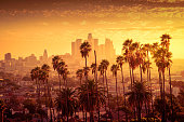 istock Beautiful sunset of Los Angeles downtown skyline and palm trees in foreground 884384784