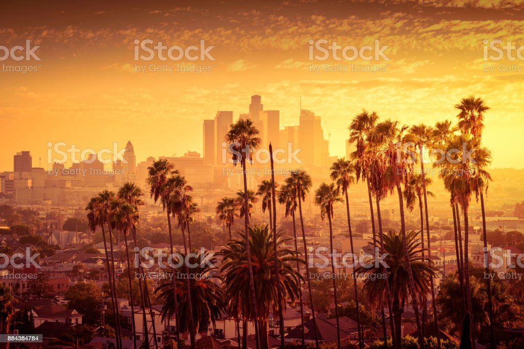 Beautiful sunset of Los Angeles downtown skyline and palm trees in foreground stock photo