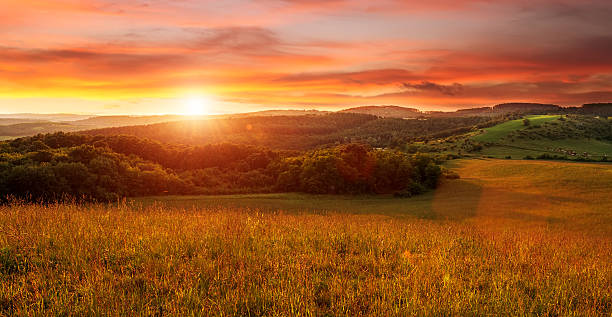Beautiful sunset on the field - in shades of orange stock photo