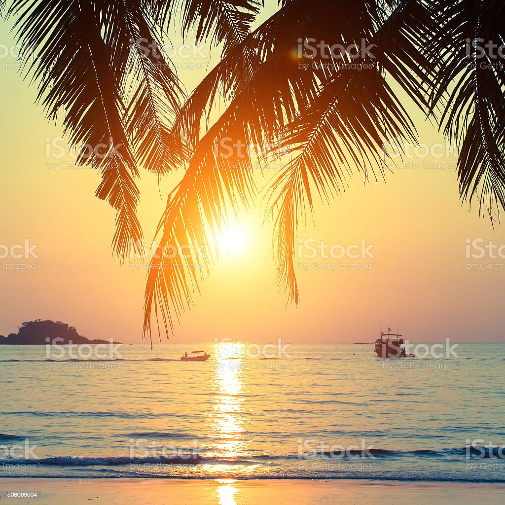 Beautiful sunset on the tropical coast. stock photo