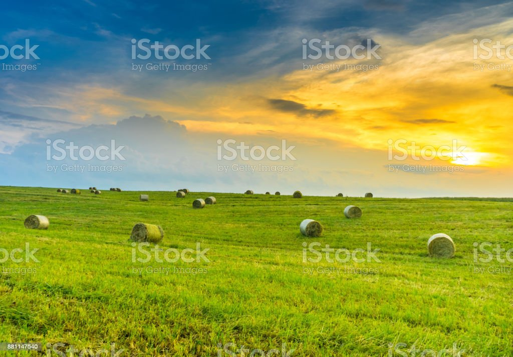 Beautiful sunset over a field stock photo