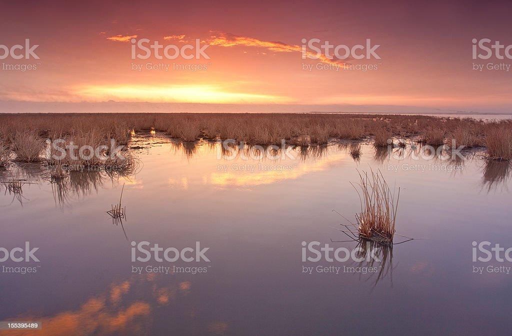 Beautiful Sunset over Prairie Marsh. royalty-free stock photo