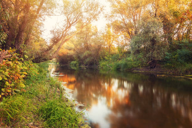 Beautiful sunset over Zagyva river in Hungary beautiful sunset  in autumn over beautiful river riverbank stock pictures, royalty-free photos & images