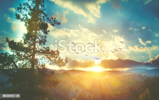 istock Beautiful sunset sky with birds 865856136