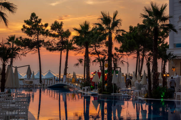 Beautiful sunset view of a pool area with palm trees, reflecting pool water and sun chairs. stock photo