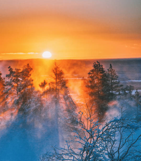 Beautiful sunset view on foggy and snowy forest in Lapland, Finland stock photo