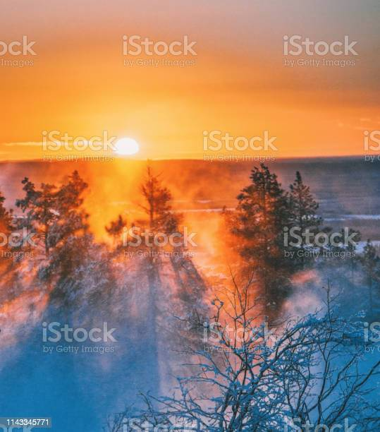 Photo of Beautiful sunset view on foggy and snowy forest in Lapland, Finland
