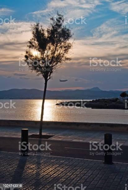 Photo of Beautiful sunset view over Palma bay