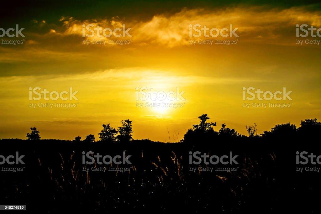 Hermosa Sunset Wallpaper Fondo Foto De Stock Y Más Banco De
