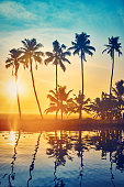 Colorful scenic shot of sunset with palm trees at the backwaters of Kerala
