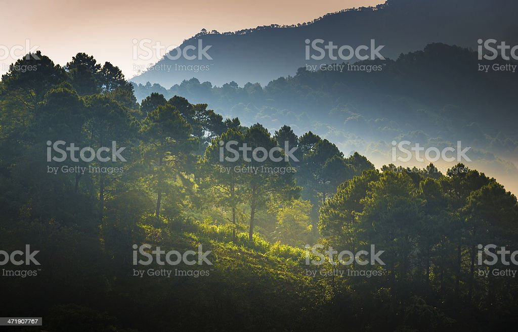 Beautiful sunshine at misty morning mountains . royalty-free stock photo