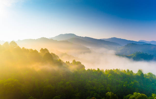 beautiful sunshine at misty morning mountains . - trees in mist stock pictures, royalty-free photos & images