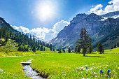 istock Beautiful Swiss Mountains in Springtime 1131616912