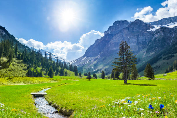 Beautiful Swiss Mountains in Springtime Beautiful Swiss Landscape in Springtime switzerland stock pictures, royalty-free photos & images