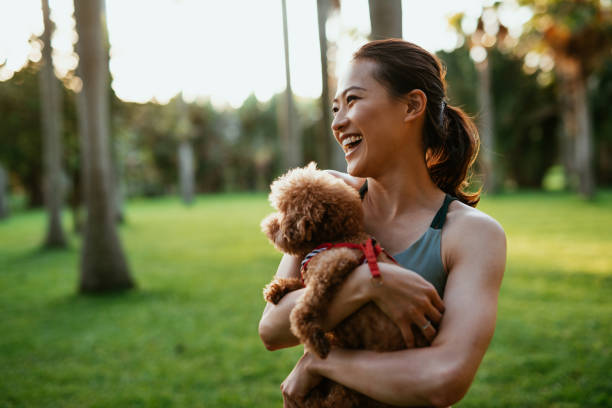 Beautiful Taiwanese sport woman with dog in the park stock photo