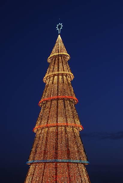 Beautiful tall Christmas tree (at sunset) stock photo