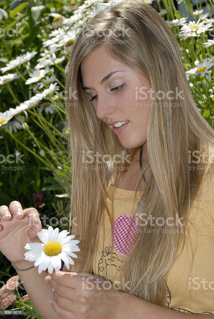 Beautiful Teenage Blonde Plucks Daisy Pedals To Check Love Status royalty-free stock photo