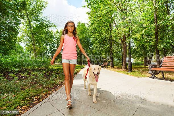 Beautiful teenage girl walking her dogs picture id512457253?b=1&k=6&m=512457253&s=612x612&h=0i35scfip1x5yt70a6ha7xquqqlo3fydwexhj4kqnfe=