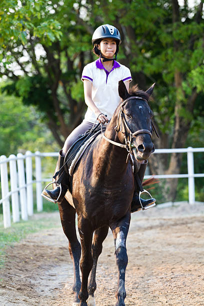 Beautiful teenager girl in brown dress riding brown horse stock photo